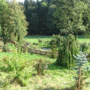 Arboretum Semetín